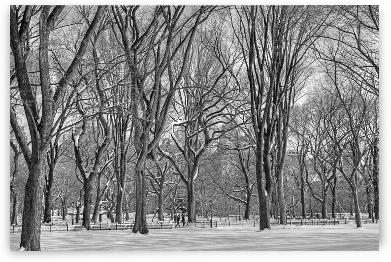 New York  148 bw by Denis Brien