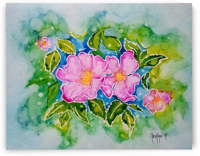 Wild Rose by Christine Cholowsky