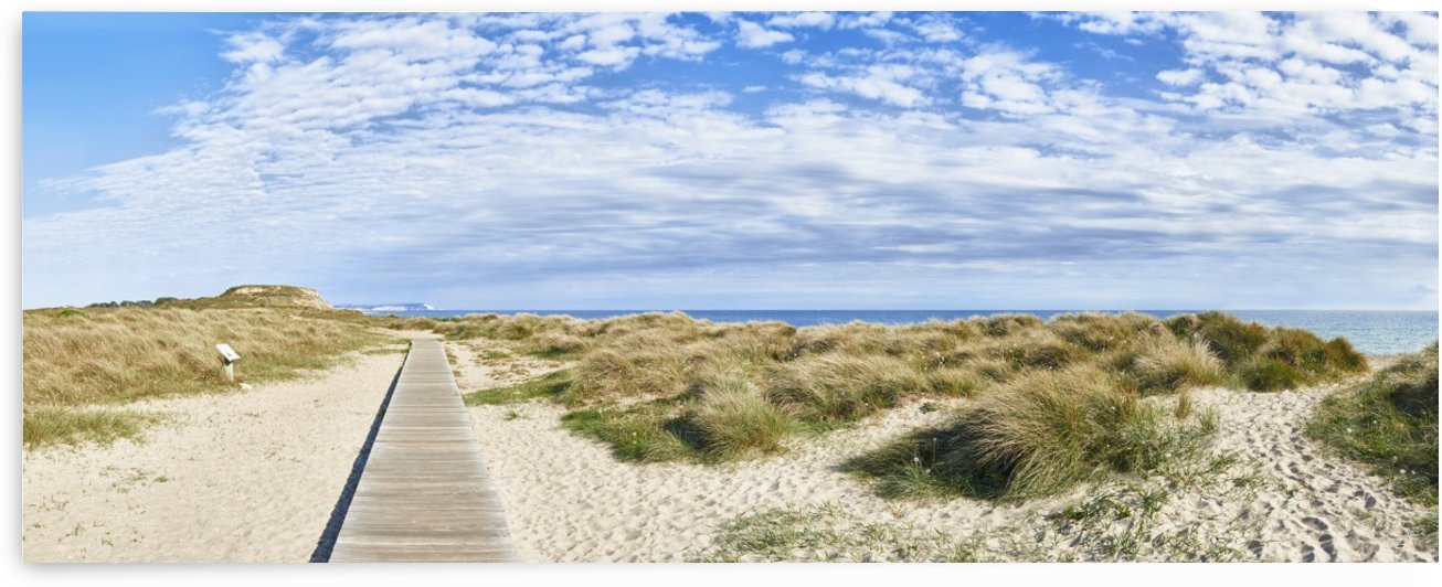 Boardwalk To Hengistbury Head by Adrian Brockwell
