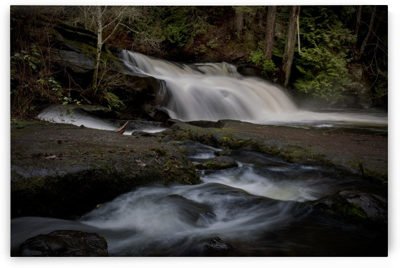 Millstone River by Randy Hall by Randy Hall