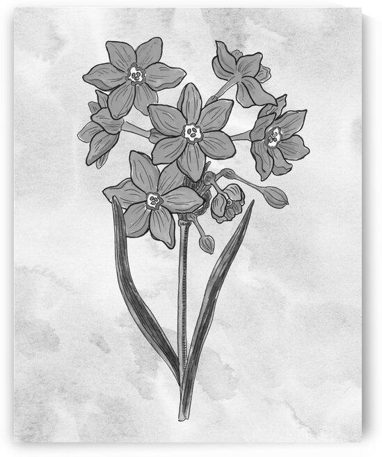 Daffodils Simple Gray Botanical Flower On Watercolor Marble  by Irina Sztukowski