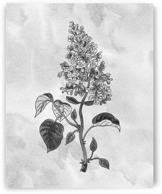Lilac Simple Gray Botanical Flower On Watercolor Marble  by Irina Sztukowski