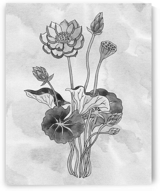 Lotus Simple Gray Botanical Flower On Watercolor Marble  by Irina Sztukowski
