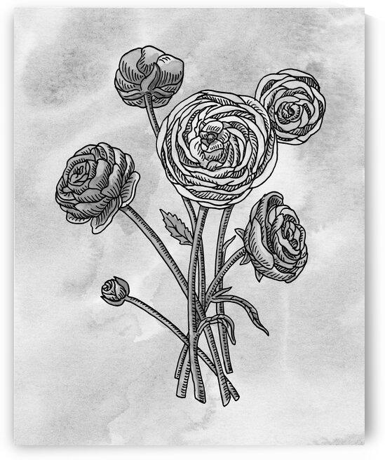 Ranunculus Simple Gray Botanical Flower On Watercolor Marble  by Irina Sztukowski