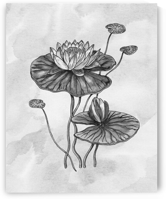 Waterlily Simple Gray Botanical Flower On Watercolor Marble  by Irina Sztukowski