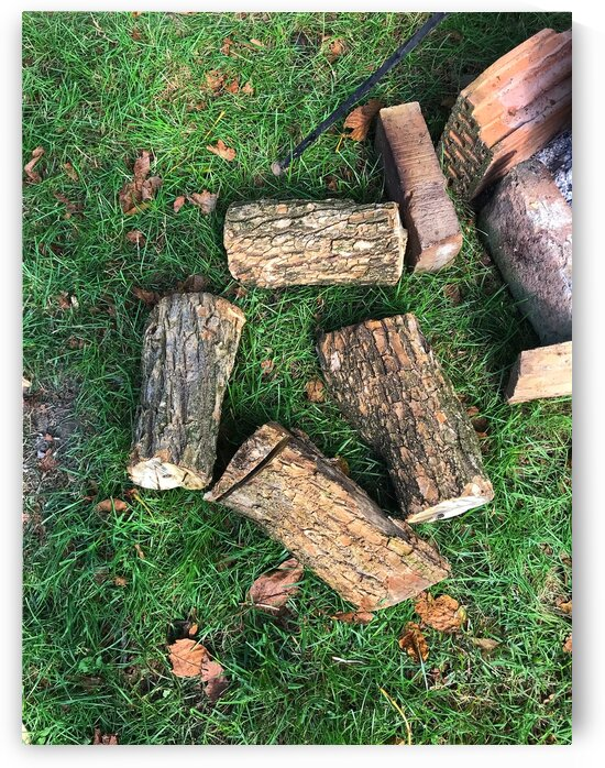 wood for fire by Anita Varga
