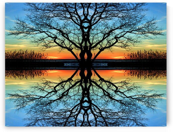 Assawoman Reflections by Bill Swartwout Photography
