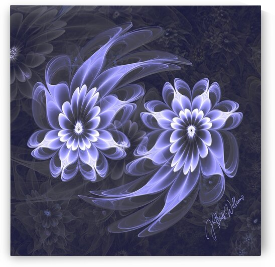 Flower Power Yin Yang by Derbyshire Hearts