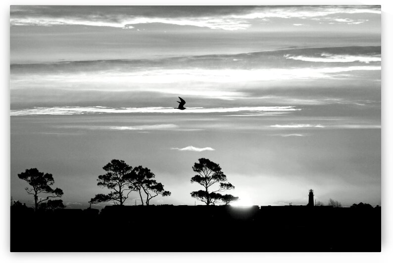 Sunrise over Fenwick Island in Black and White by Ocean City Art Gallery