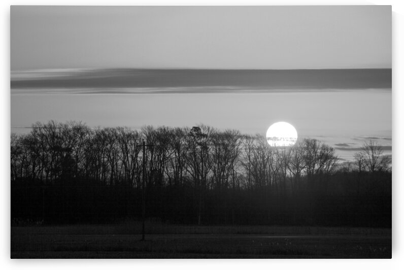 Roxanna Sunrise in Black and White by Ocean City Art Gallery