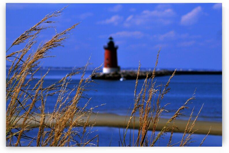 henlopen light w grasses 9585 by Ocean City Art Gallery