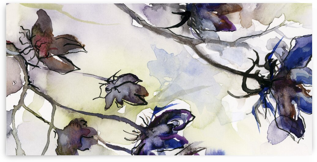 Seed Pods Modern Watercolor and Ink 2 by Ginette Fine Art