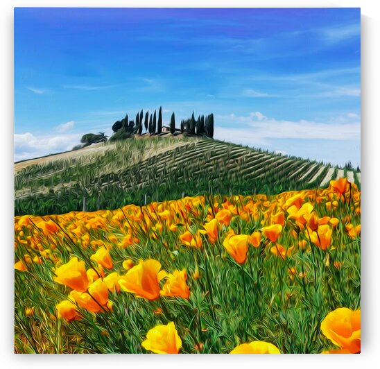 Yellow flowers on the background of a hill with a vineyard in Tuscany.  by Ievgeniia Bidiuk