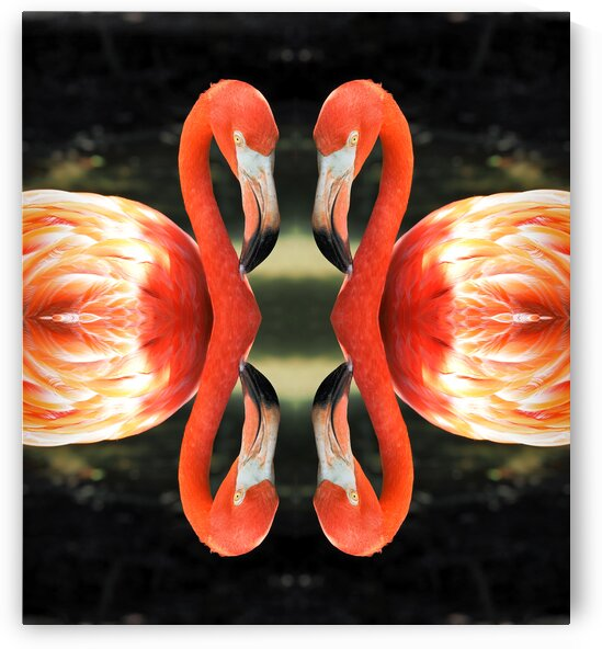 Flamingo Reflections Digital Abstract by Ocean City Art Gallery