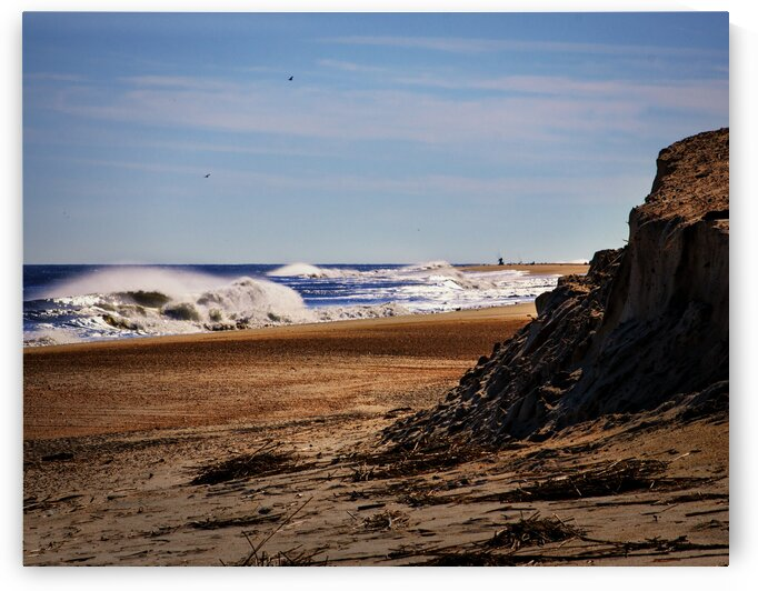 beach cliff at indian river 3226 by Bill Swartwout Photography