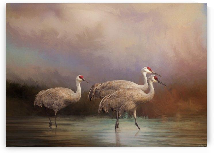 Family - Bird Art by Jordan Blackstone