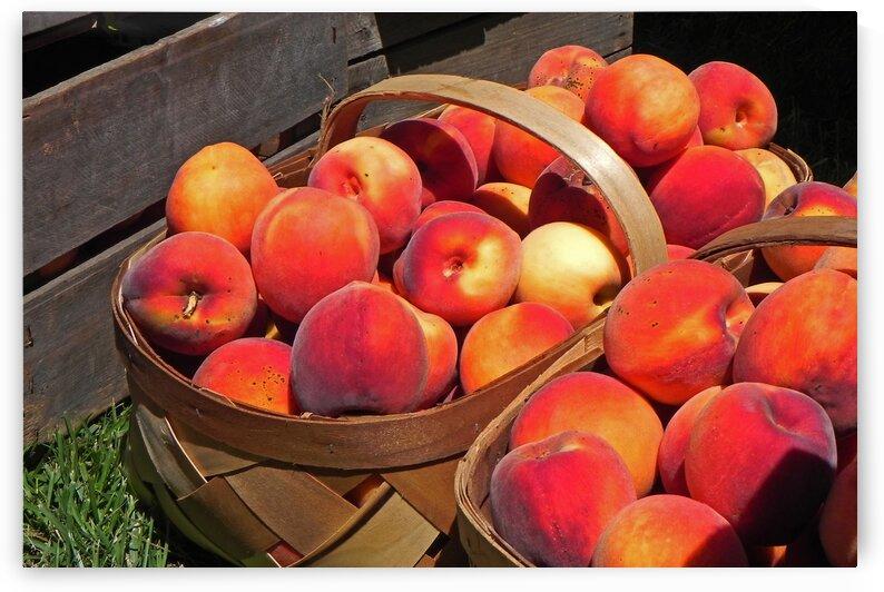 berlin peach festival baskets 0142 by Bill Swartwout Photography