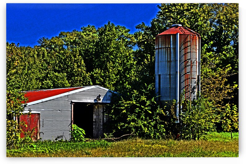 abandoned silo shed 8739 by Bill Swartwout Photography