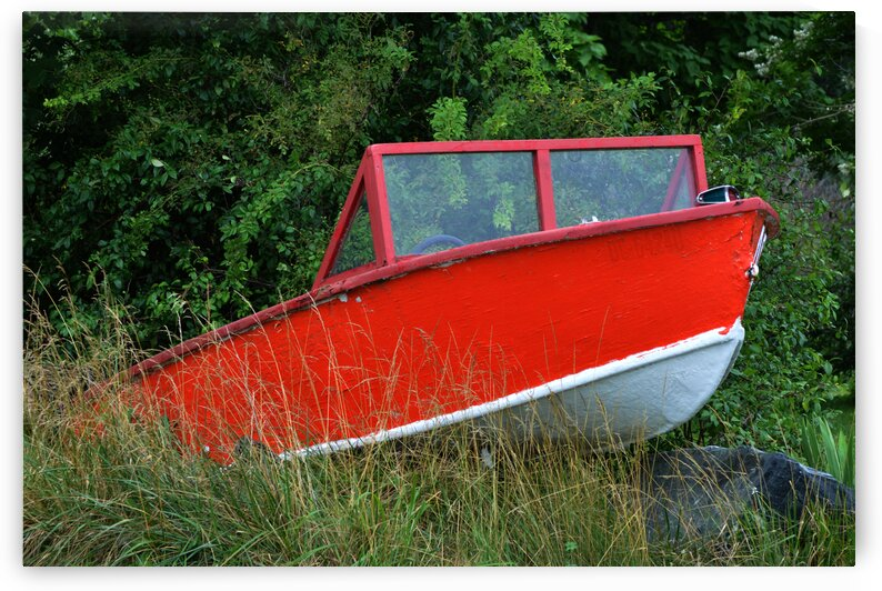 boat red in weeds 6287 by Bill Swartwout Photography