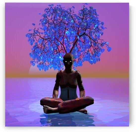 Meditation Tree by Matthew Lacey
