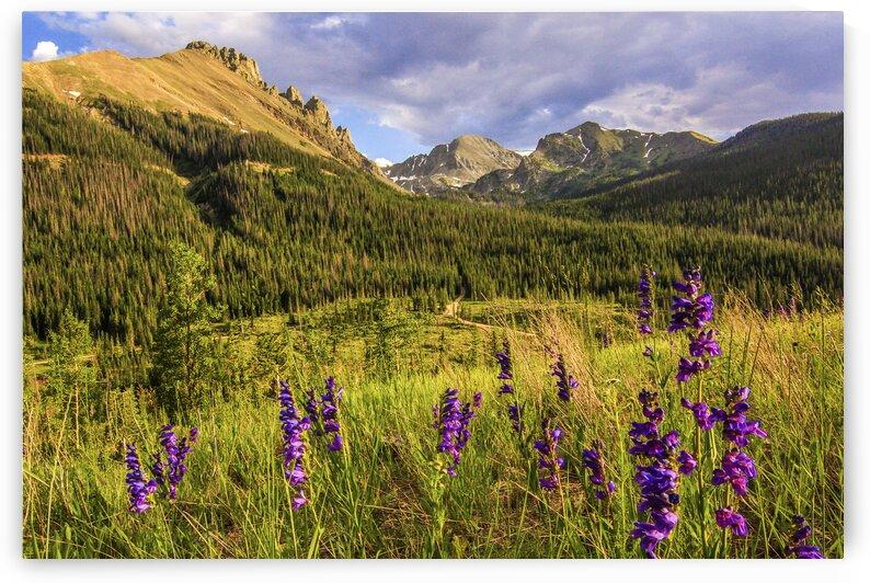 Colorado Mountains by Bryan Caplis