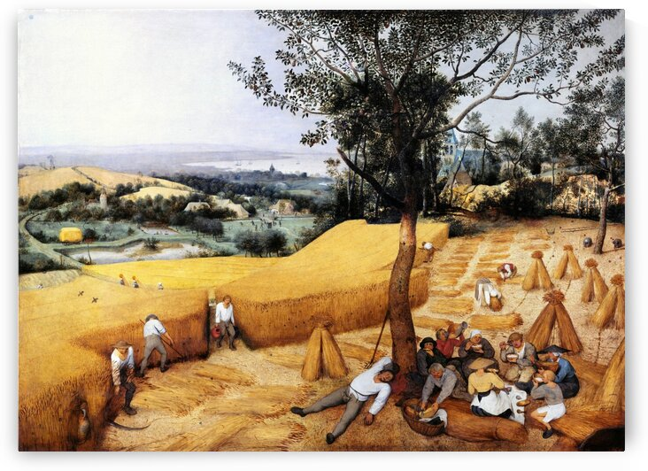 The grain harvest by Pieter Bruegel by Pieter Bruegel