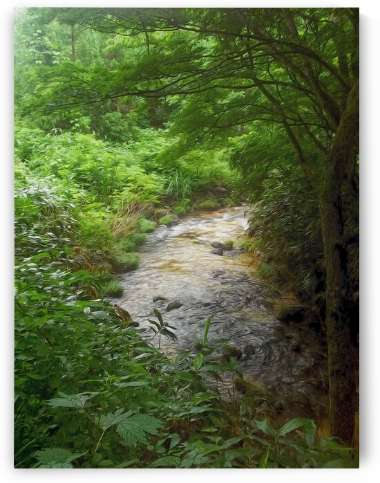 River AizuWakamatsu by Ian Gabriel Art