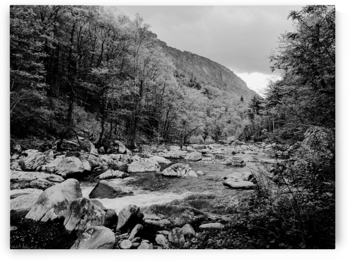 Upper Linville River - B&W by Adam Mobley