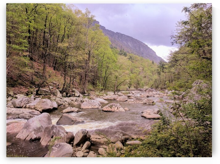 Upper Linville River by Adam Mobley