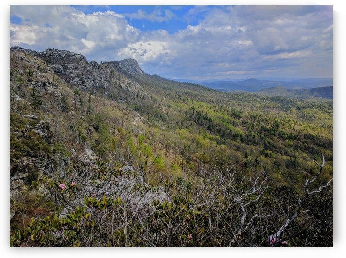 Linville Gorge by Adam Mobley