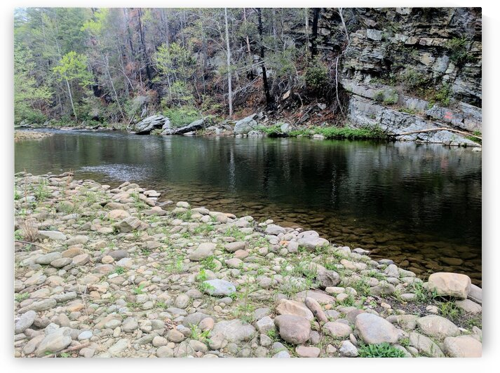 Lower Linville River by Adam Mobley