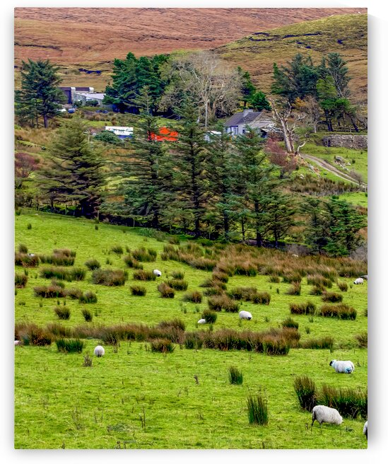 Donegal 7 by Eric Franks Photography