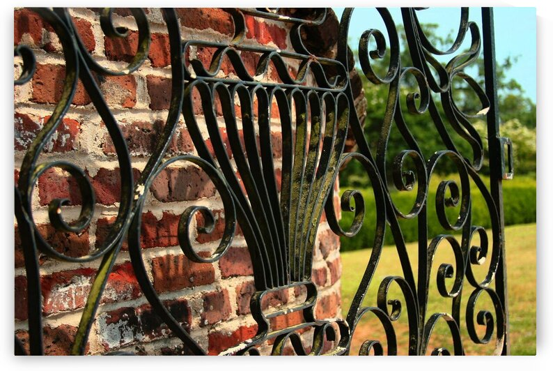 Iron Gate at Boone Hall Plantation by Adam Mobley
