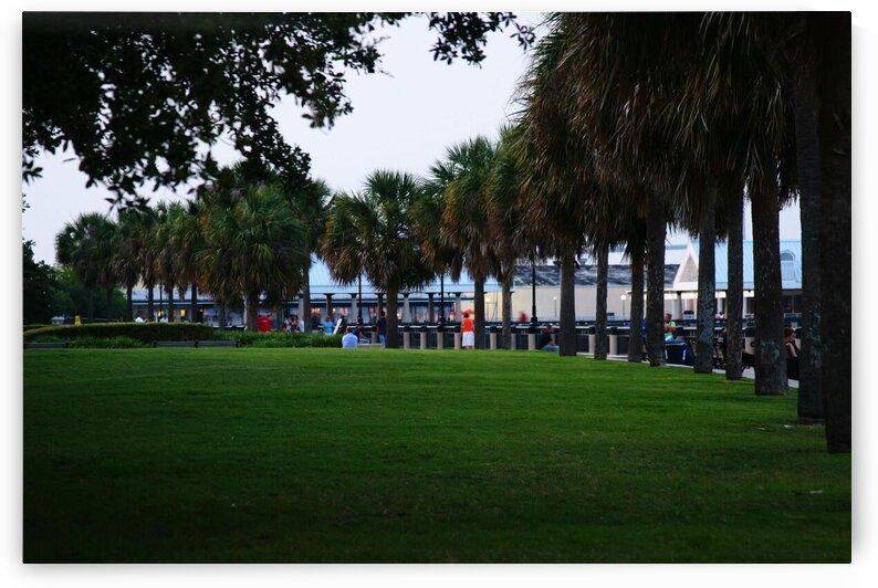Charleston Battery Park by Adam Mobley