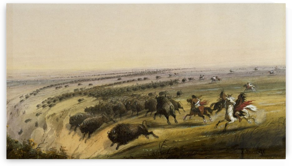 Hunting Buffalo by Alfred Jacob Miller