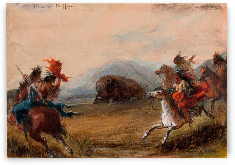Wounded Buffalo by Alfred Jacob Miller