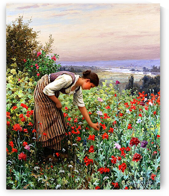 Girl Picking Poppies_OSG by One Simple Gallery