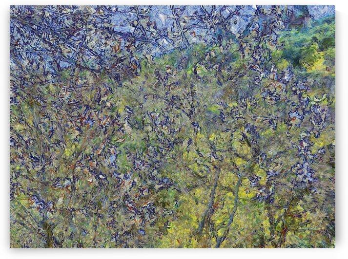 Italian Spring Blossom Van Gogh Style by Dorothy Berry-Lound