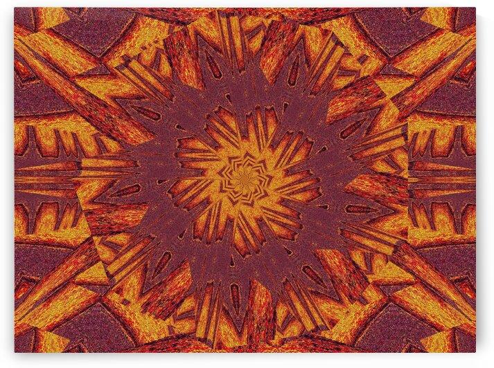 Desert Sunshine 281 by Sherrie Larch