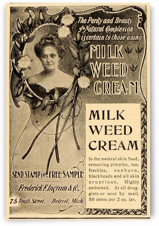 Milk weed cream by VINTAGE POSTER