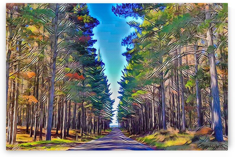 TO THIS PATH I GO Te Arai New Zealand Digital Art from Original Photography By:Zo® by Maria Desnoyers Art Print Collection By:Zo