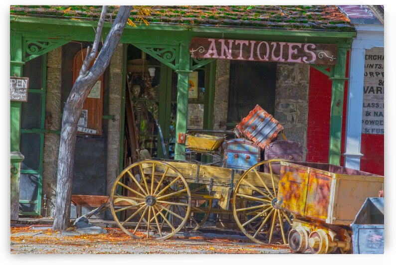 Antique Shop 2 by Frank Wilson