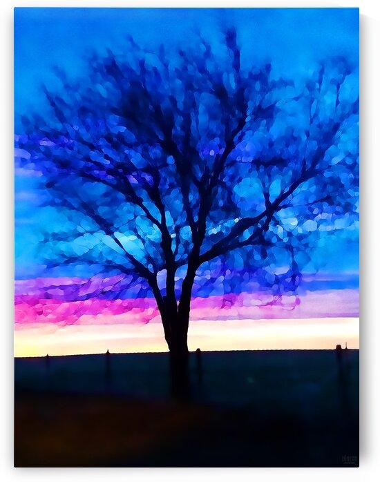 stillness by Pierce Anderson