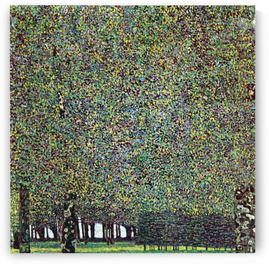 The Park by Klimt by Klimt