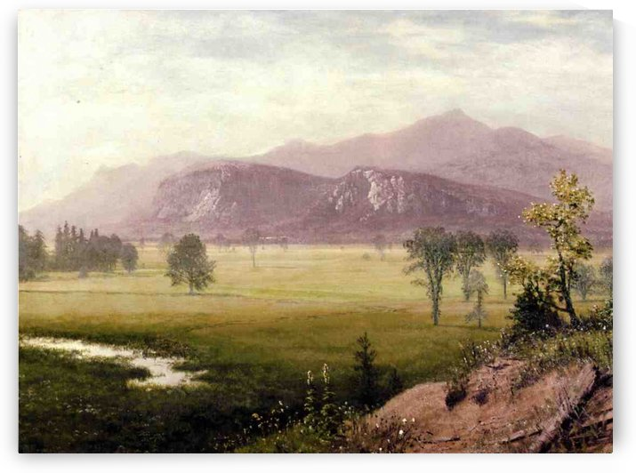 Conway Meadows, New Hampshire by Albert Bierstadt