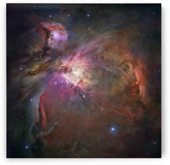Orion Nebula  by Adrian L Austin
