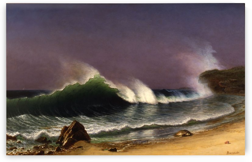 After a Norther, Bahamas by Albert Bierstadt
