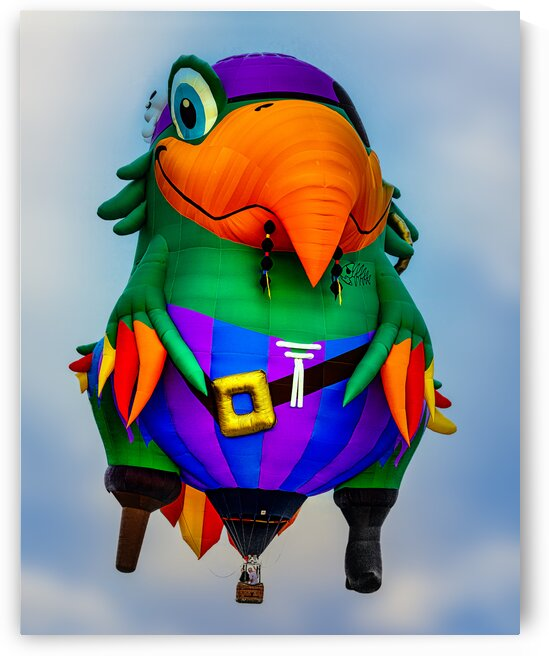 Pirate Parrot Adventures by Bob Orsillo