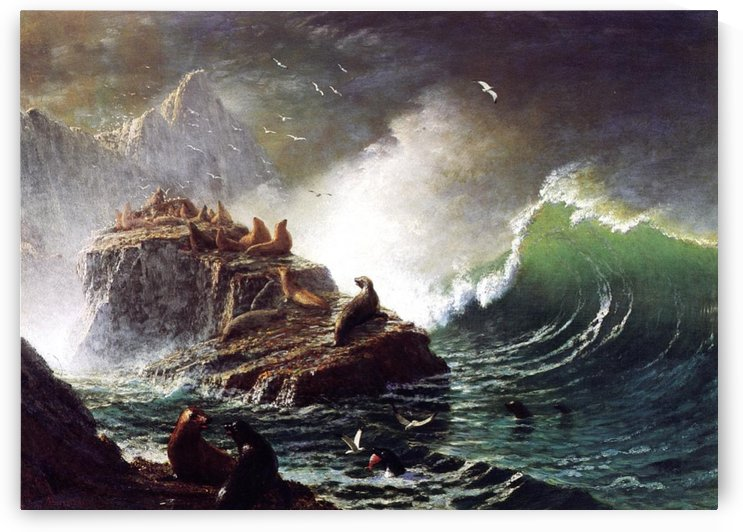 Seals on the Rocks, Farallon Islands by Albert Bierstadt