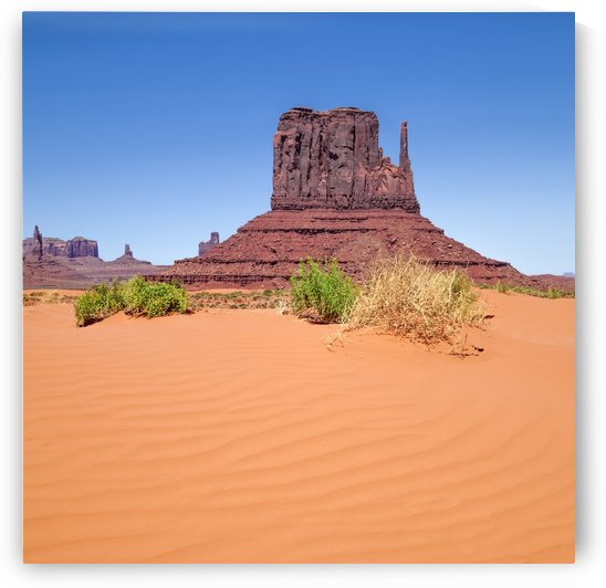 MONUMENT VALLEY West Mitten Butte by Melanie Viola